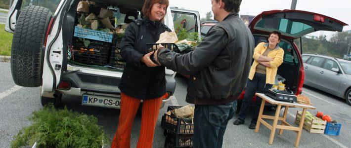 Partnersko kmetijstvo na ekološki kmetiji Romane Rejc