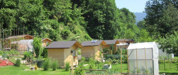 Skupnostni urbani vrtički v Slovenj Gradcu