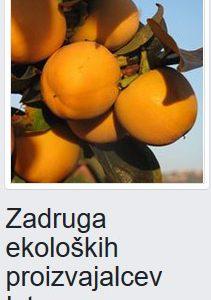 Zadruga ekoloških pridelovalcev Istre