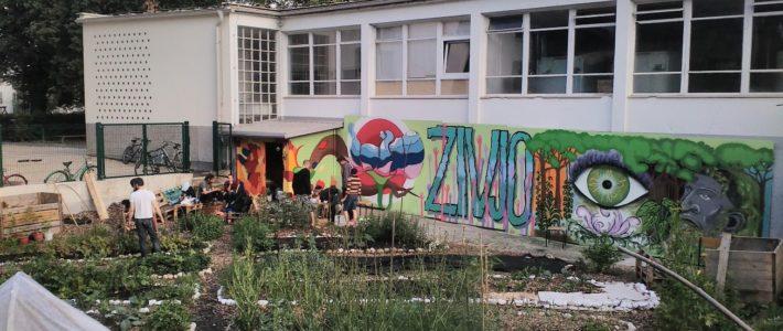 Študentski skupnostni vrtovi